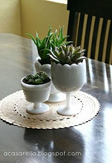 Stunning Diy Succulents For Indoor Decorations 11