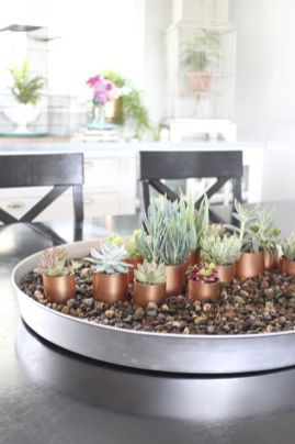 Stunning Diy Succulents For Indoor Decorations 27