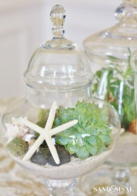 Stunning Diy Succulents For Indoor Decorations 34