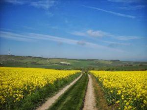 Exemple de paysage traversé