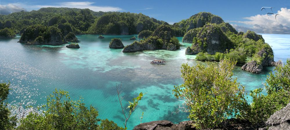 WEST PAPUA BECOMES WORLDS FIRST CONSERVATION PROVINCE  Papua Diving Resorts  Raja Ampat