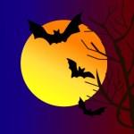 月とコウモリ(JPEG)