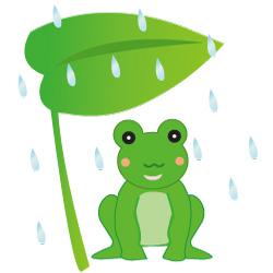 梅雨のかえる(JPEG)