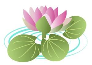 蓮の花(JPEG)
