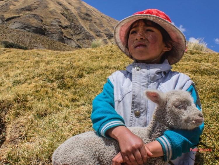 Peruvian girl with goat