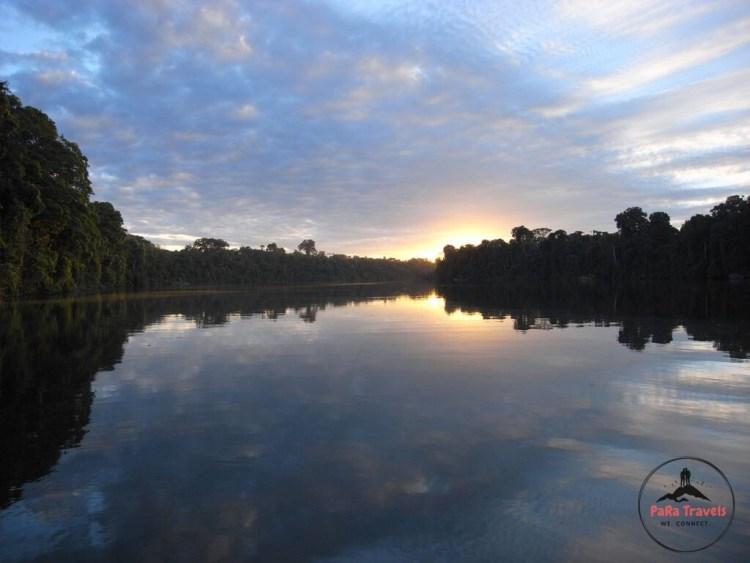 Tambopata evenings