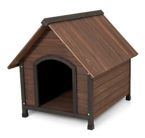 productos chihuahua casas