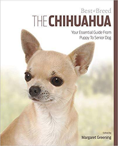 libros para chihuahuas