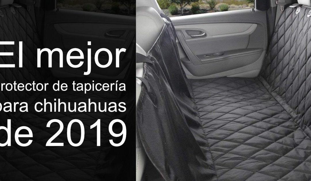 el mejor protector de tapicería para chihuahuas de 2019