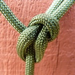 Bowline Knot tied in Paracord 550