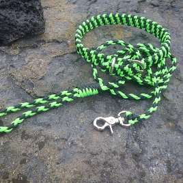 Neon Green And Black Leash and Collar