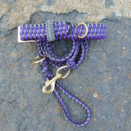 Sarah's Leash and Collar Sets