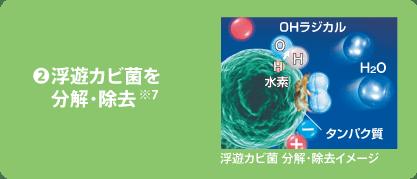 ❷浮遊カビ菌を分解・除去※7