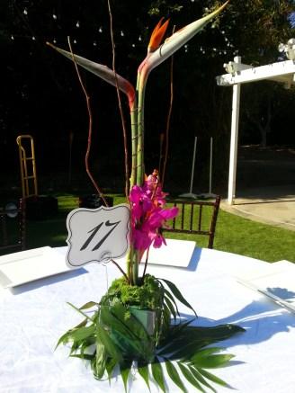 San Diego Outdoor Wedding