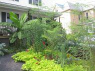 tropical garden 2
