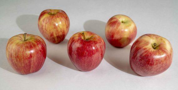 Gala Apple Fruits