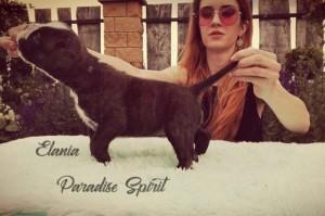 ELANIA Paradise Spirit - RESERVED