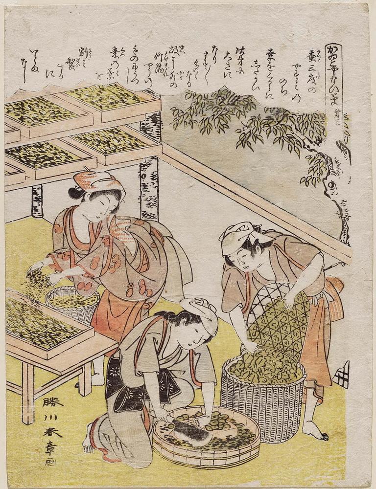 Katsukawa Shusho_No. 3, from the series Silkworm Cultivation (Kaiko yashinai gusa)