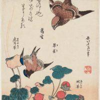 鵙 翠雀 虎耳草 蛇苺(もず るり ゆきのした へびいちご)