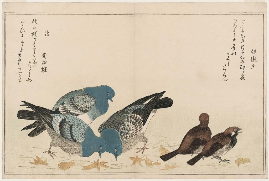 Utamaro_Sparrows (Murasuzume) and Pigeons (Hato)