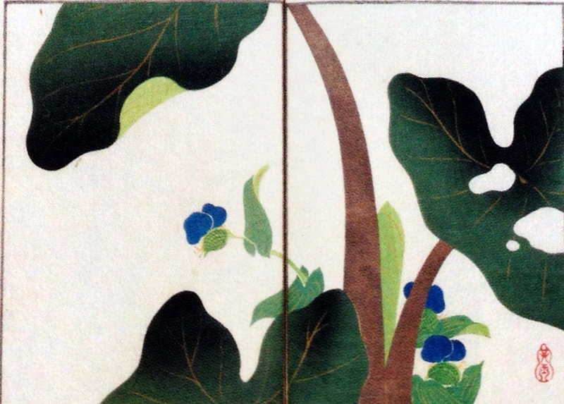 中野其玉 Nakano Kigyoku 其玉画譜 15 芋の葉の露 Book of pictures 15  The dew of the leaf of taro