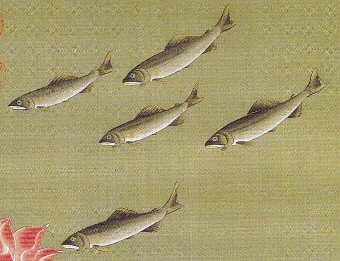 伊藤若冲 Ito Jakuchu 動植綵絵 colorful realm: japanese bird-and-flower paintings 蓮池遊魚図  Renchi Yugyo-zu(Lotus Pond and Fish)