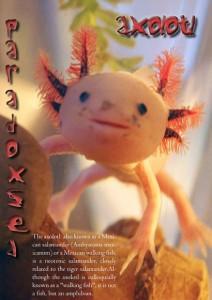 paradox ethereal magazine 06-74