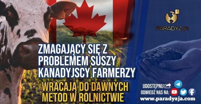 Zmagający się z problemem suszy kanadyjscy farmerzy wracają do dawnych metod w rolnictwie