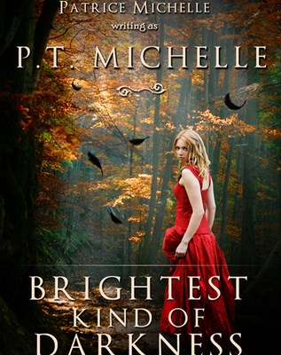 brightest kind of darkness - p.t. michelle