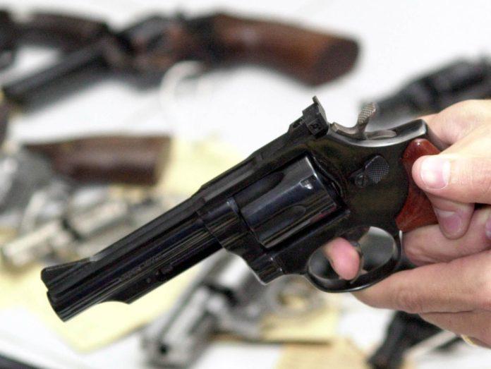 Senadores da PB votam pela derrubada do decreto das arma