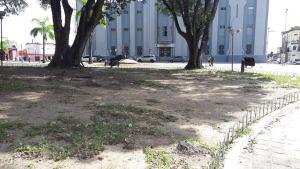 Praças históricas sofrem com falta de manutenção e acúmulo de lixo em JP