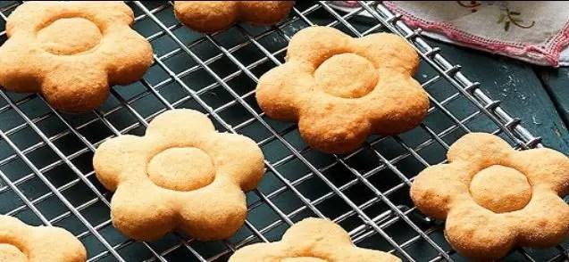 ginger-biscuits-biscoito-de-gengibre