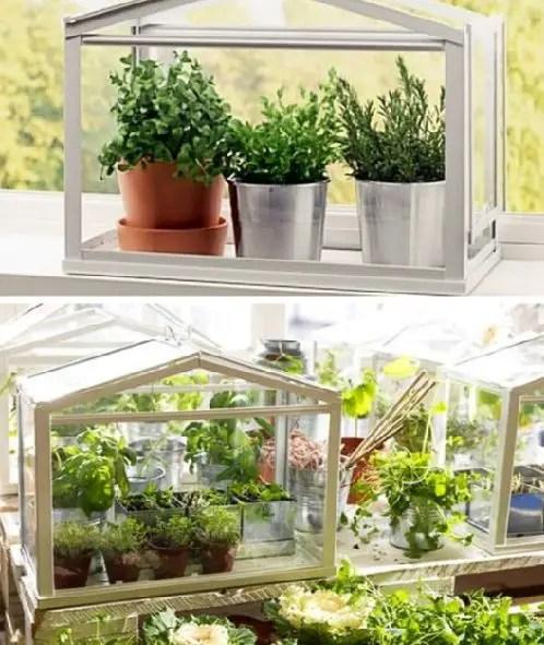 mini-horta-ideias