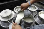 Acuerdan mantener volumen de compra de leche