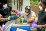 Envía India equipos a investigar brote de mortal virus