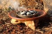 Preservación del copal para el desarrollo sostenible