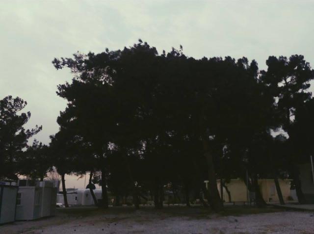 στρατόπεδο 4