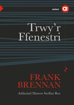 Cyfres Amdani Trwy'r Ffenestri