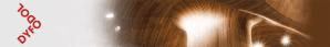 Dyfodol i'r Iaith logo