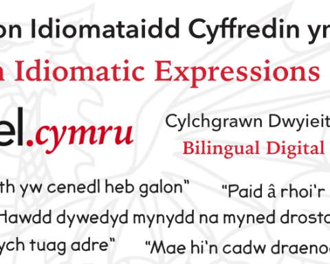 Idiomatic Expressions in Welsh