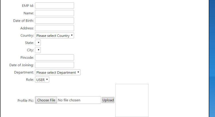form layout registration form