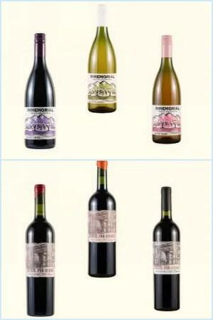 Vinhos produzidos a partir de vinhedos argentinos centenários chegam ao Brasil