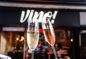 Ice bags: dica do Vino! para curtir verão com estilo e vinho gelado
