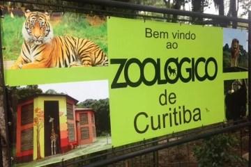 Zoológico de Curitiba abre com tecnologia inovadora para conter aglomeração