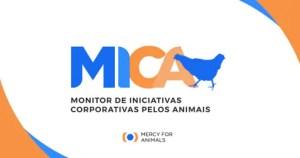 Mercy For Animals lança plataforma para monitorar o comprometimento de empresas com políticas de bem-estar animal