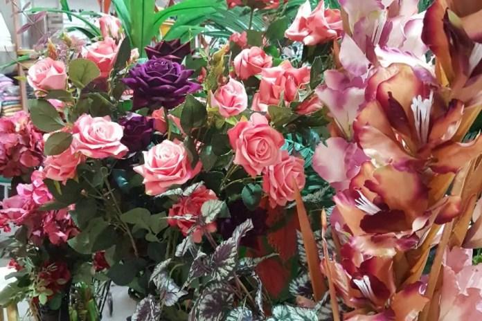 Produção de rosas como atividade agrícola é destaque no Boletim Agropecuário