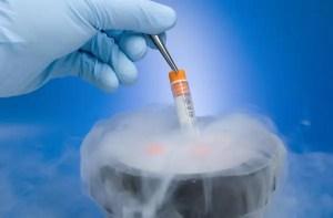 Pandemia trouxe incertezas com o futuro e fez crescer procedimentos de congelamento de óvulos