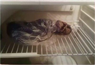 Un alien au frigo à Petrozavodsk