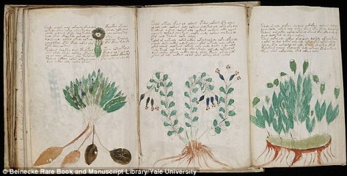 Le célèbre manuscrit de Voynich enfin décodé ?