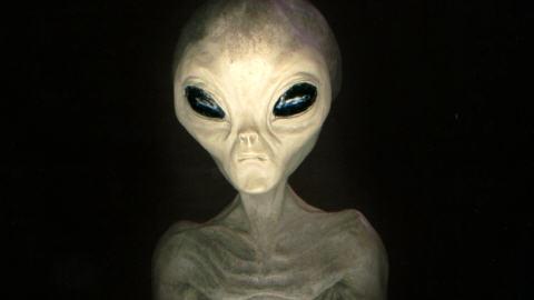 Rencontre avec extraterrestres france 5